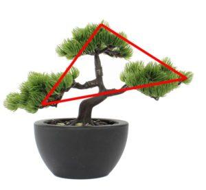 bonsai_dreieck