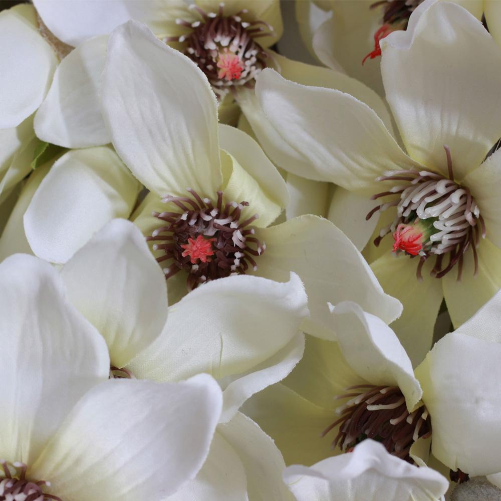 magnolie weiss