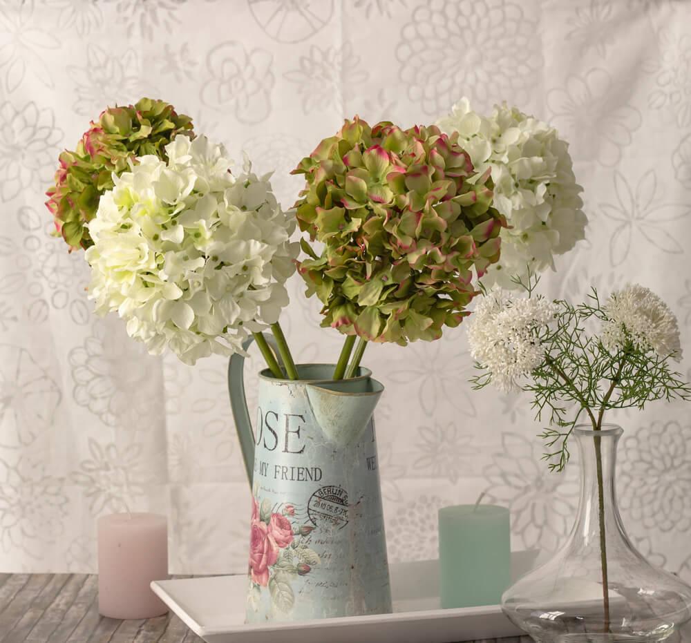Hortensien-weiss-und-grün